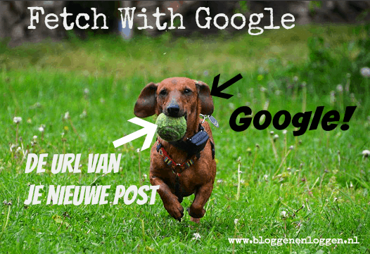 fetch met google